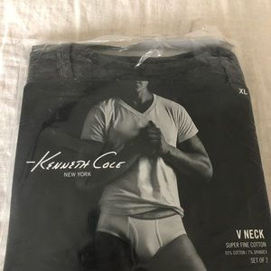 New in bag Kenneth Cole gray v-neck t-shirts.